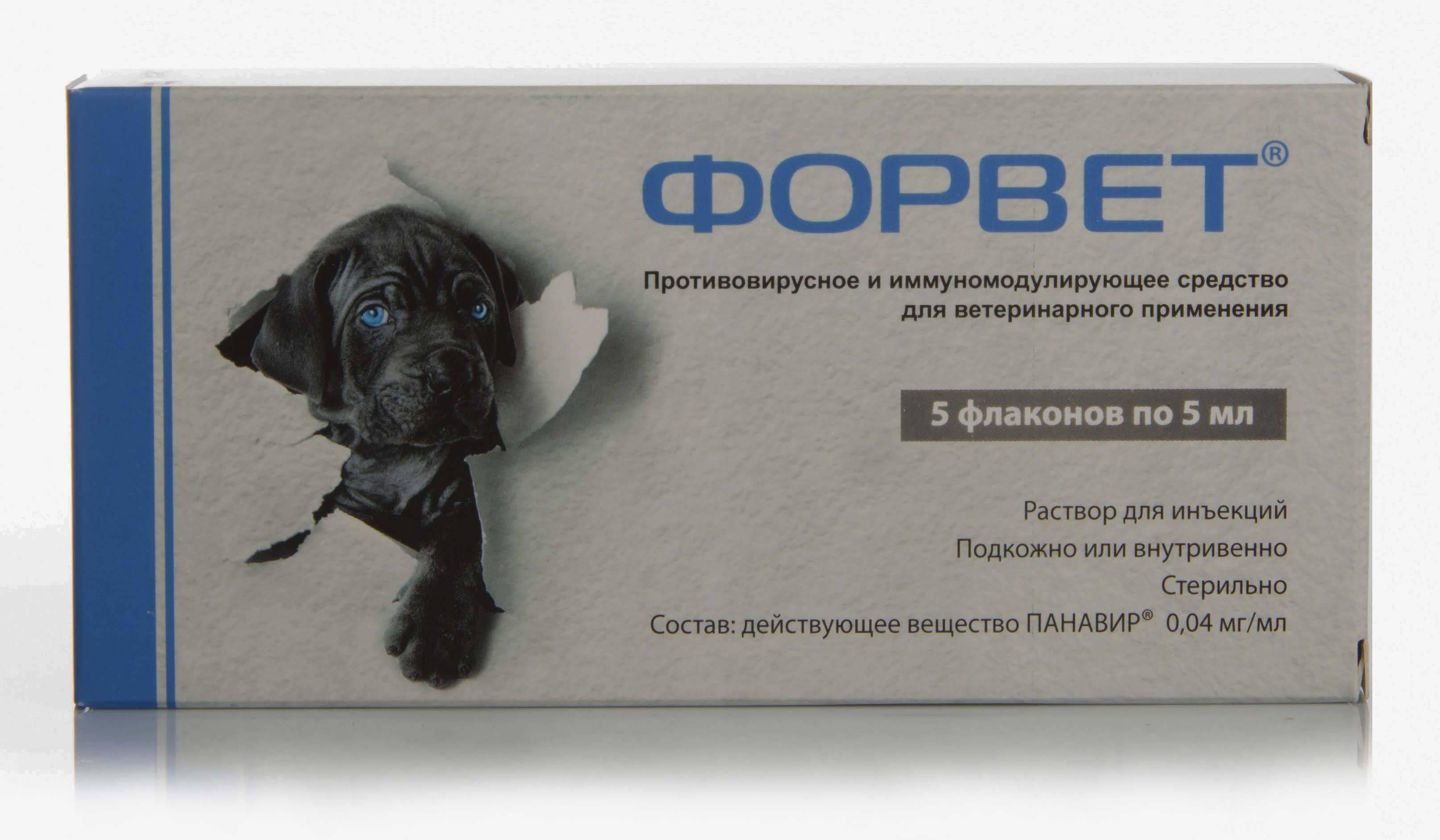 Форвет для собак