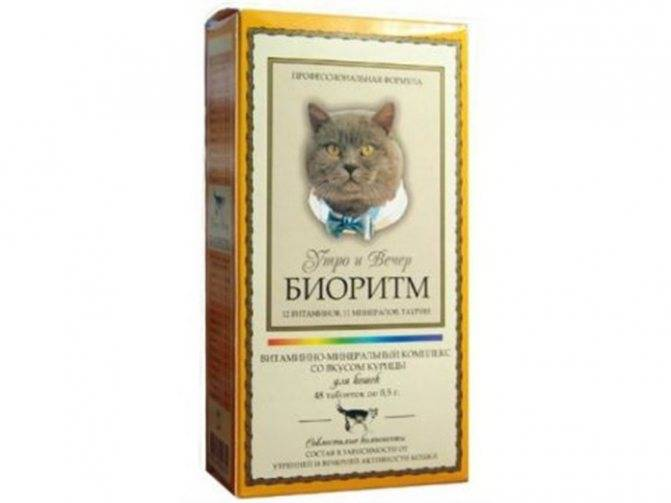 Корм фармина (farmina) для кошек | состав, цена, отзывы