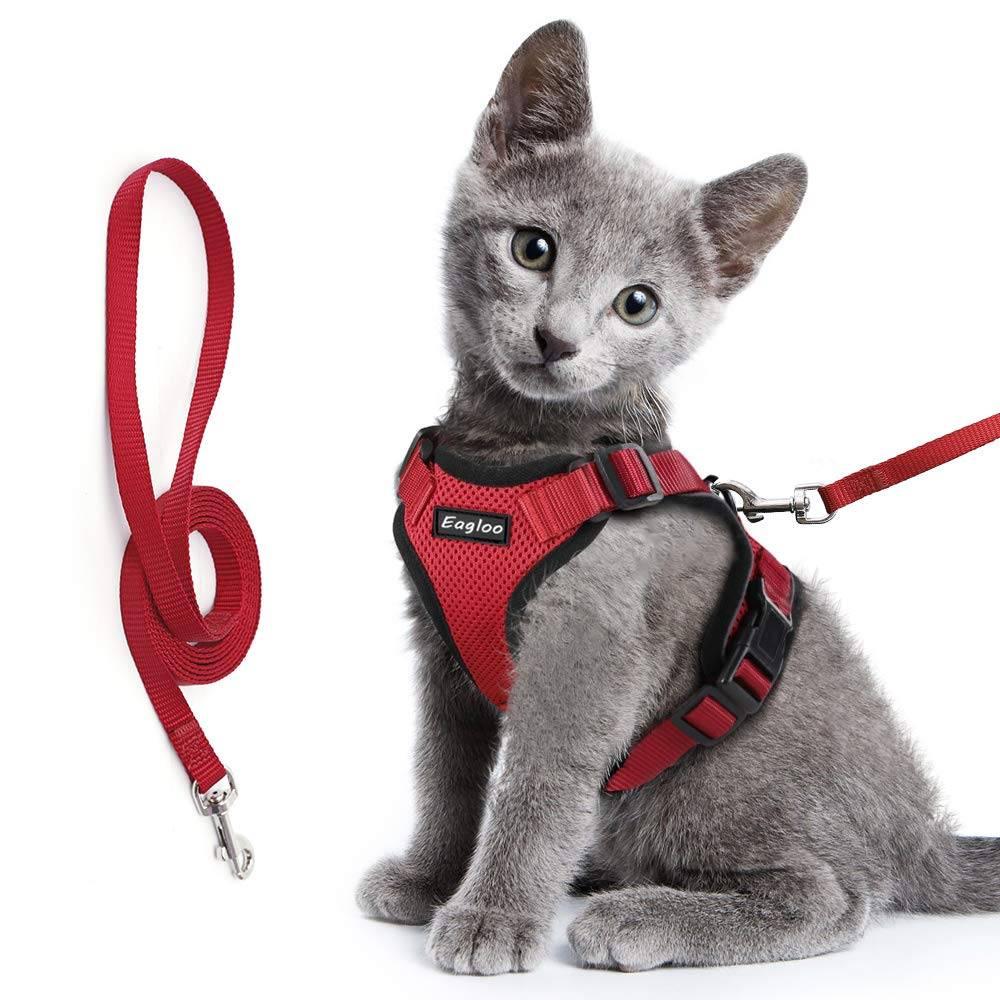 Шлейка для кошек и котов