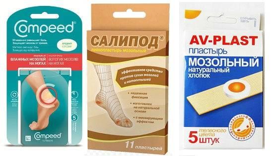 Подкожный клещ у кошек - симптомы и лечение, фото - kotiko.ru