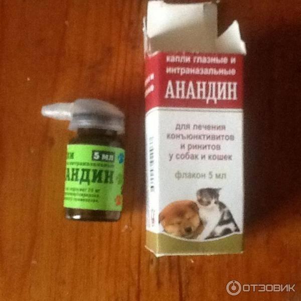 Анандин для кошек: инструкция по применению капель, мази и раствора для инъекций, отзывы