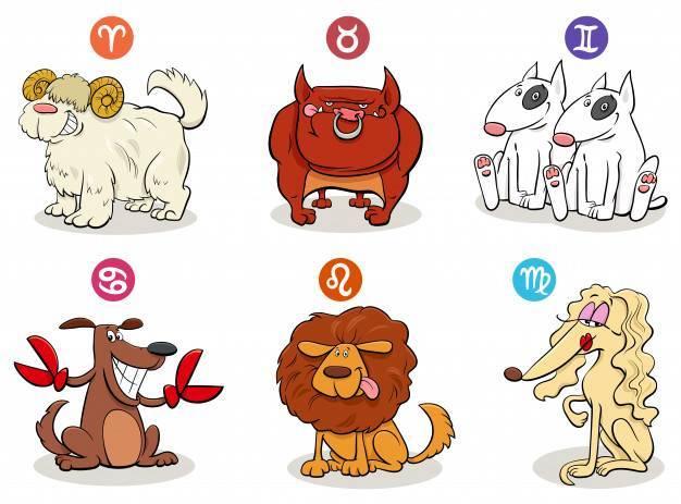 Как выбрать подходящую породу собак, учитывая знак зодиака будущего хозяина