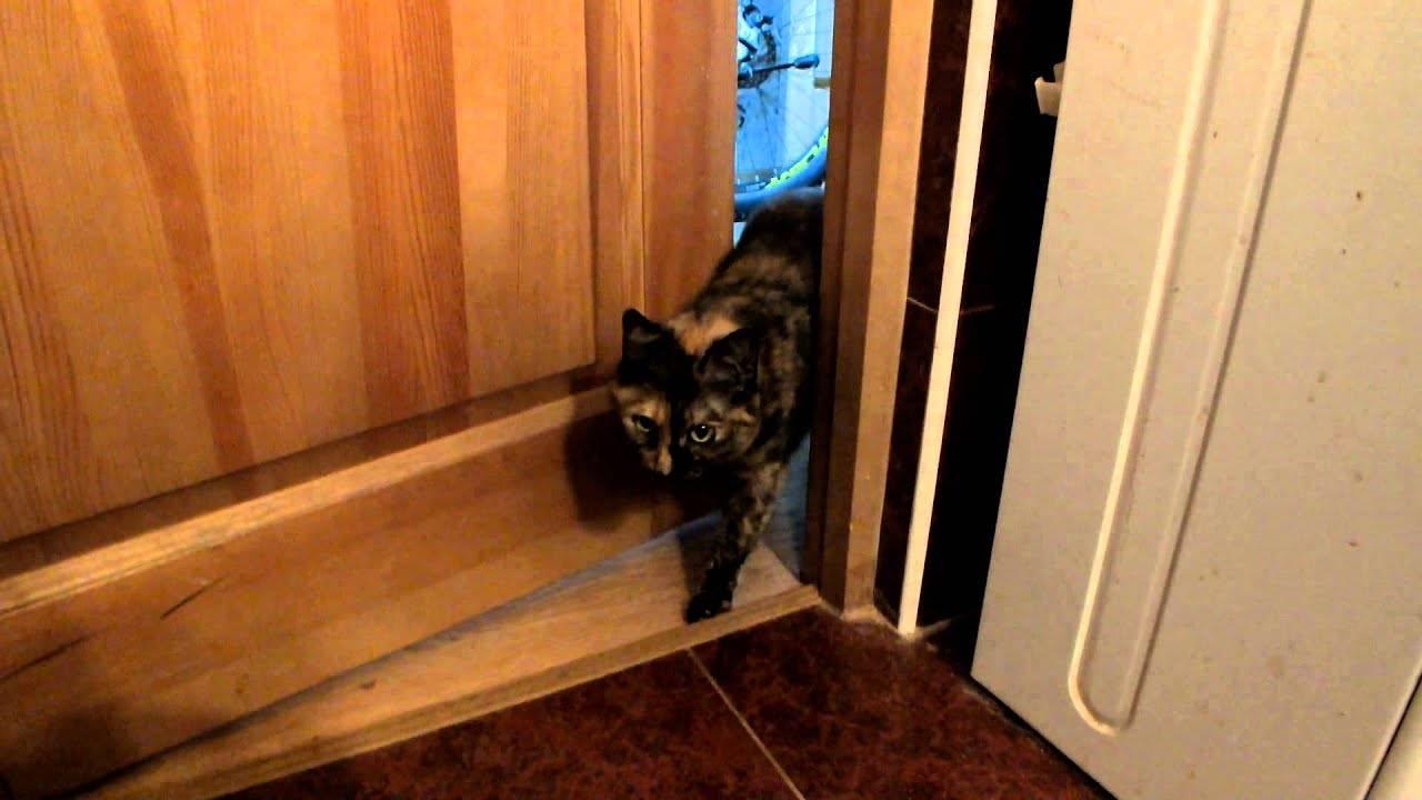 Дверь холодильника туго открывается - что делать? - наш ответ