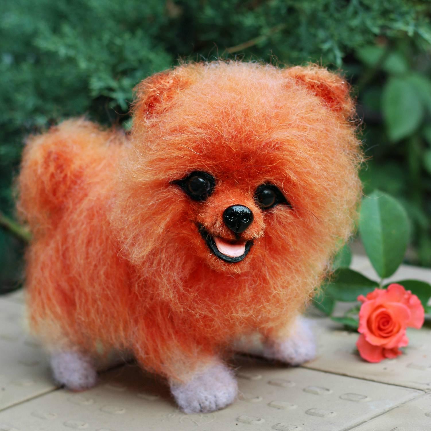 Топ-20 – самые красивые породы собак в мире с фото и описнием
