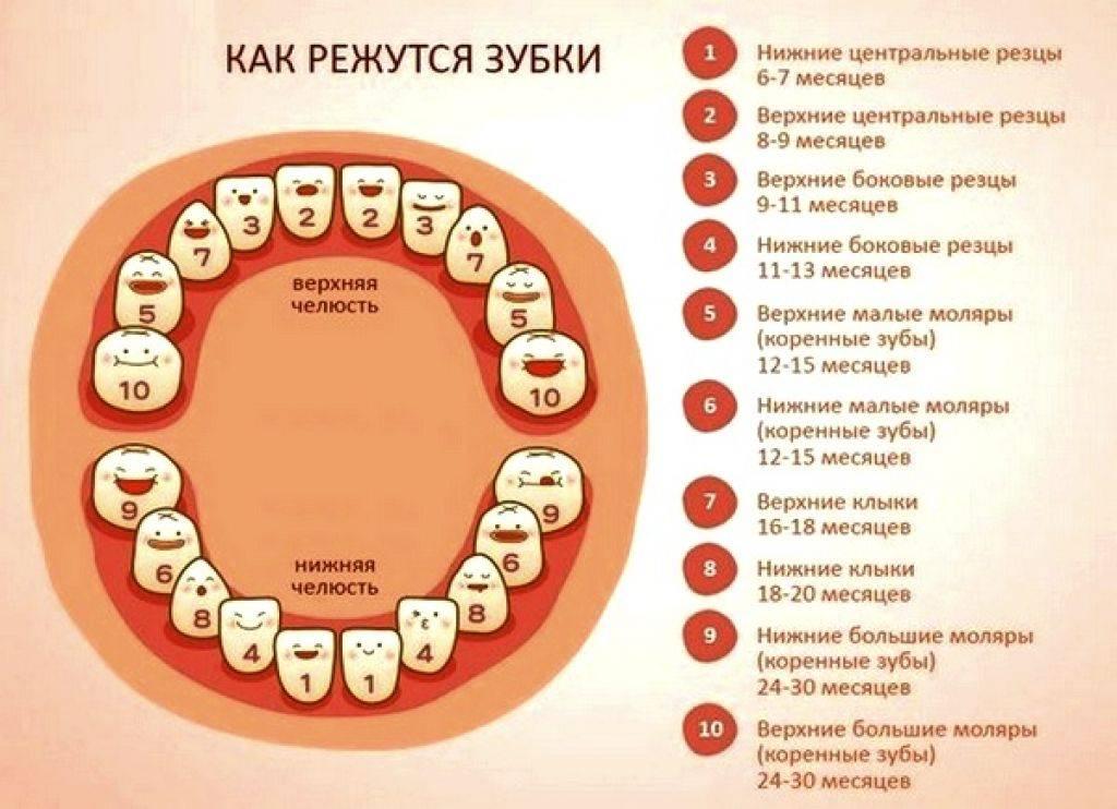 Болезни десен и зубов