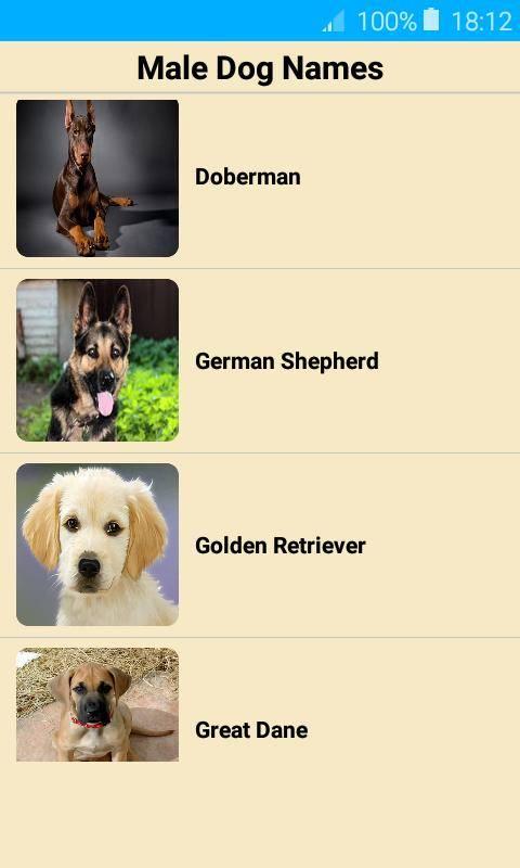 Имена для собак мальчиков (кобелей)