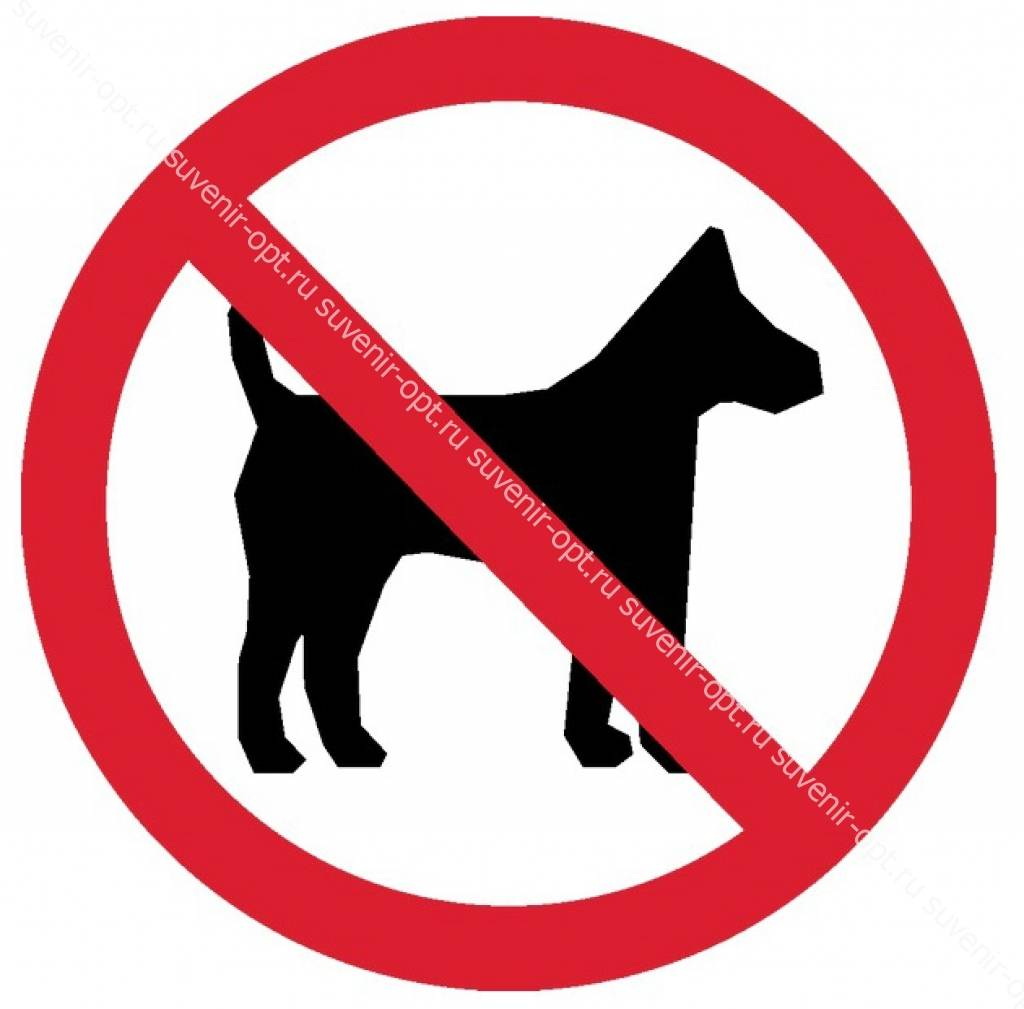 Пустят ли с собакой в магазин: на чьей стороне закон // нтв.ru