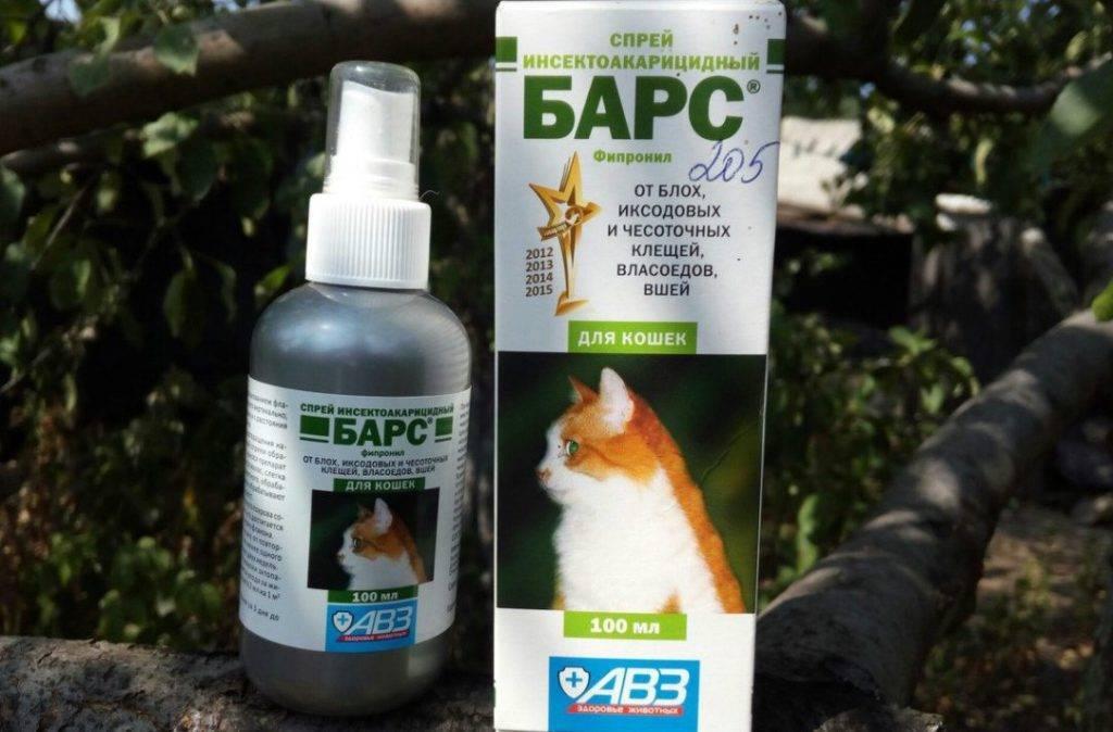 Таблетки от блох для кошек и собак