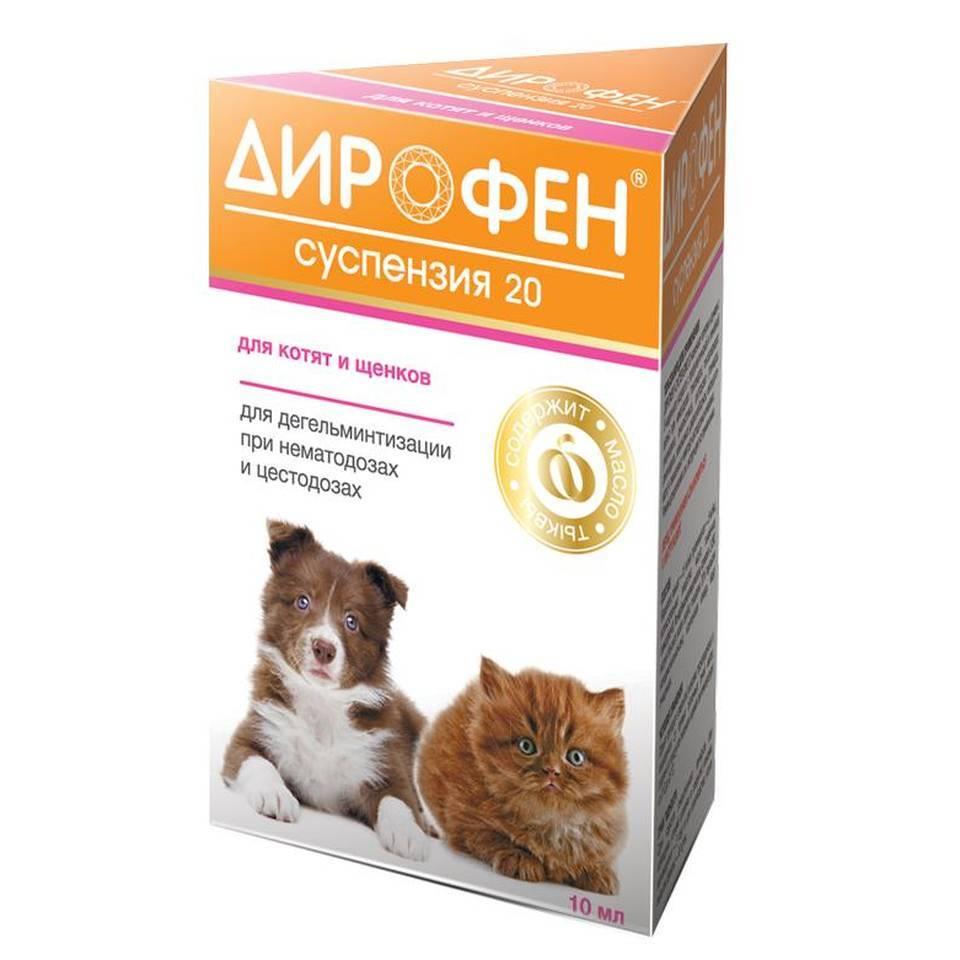 Дирофен (суспензия) для котят, кошек, щенков, собак | отзывы о применении препаратов для животных от ветеринаров и заводчиков