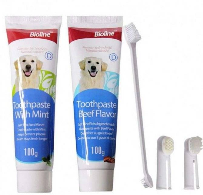 Отбеливающая зубная паста – рейтинг 2021, отзывы стоматологов
