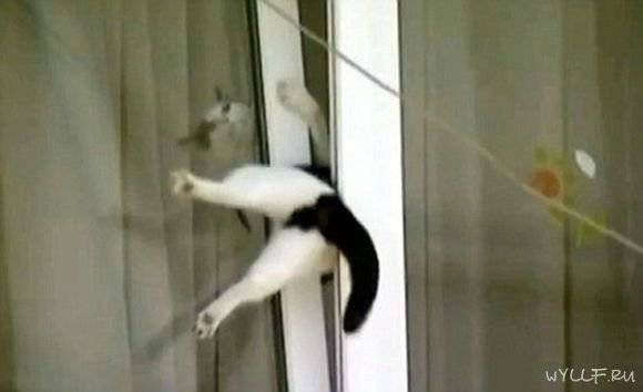 Что делать, если кто-то пытается открыть дверь