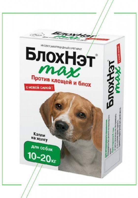 Блохнэт для собак