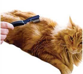 Колтунорез для кошек как основной инструмент для ухода за шерстью любимца