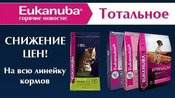 Корм для собак «eukanuba» («эукануба»): описание линейки, состав, преимущества и недостатки питания