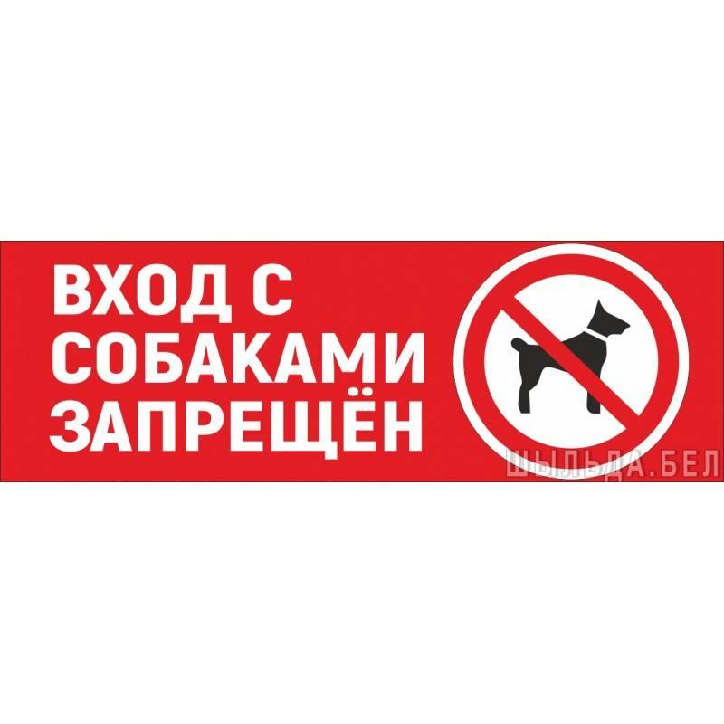 Вход запрещен: почему в магазины нельзя заходить с собаками
