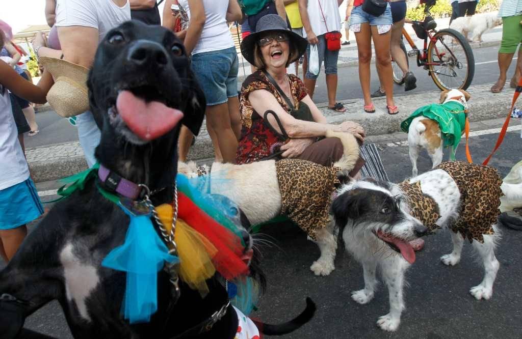 Бразильский карнавал в рио-де-жанейро: самба никогда не лжет