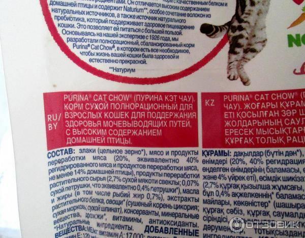 Canagan корм для кошек (канаган) — отзывы ветеринаров,владельцев
