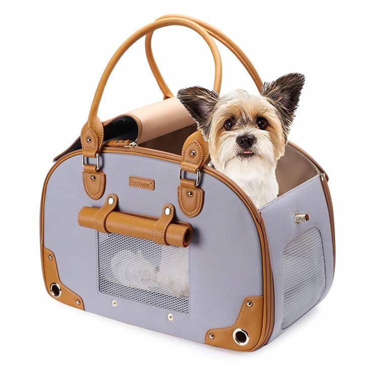 Как правильно выбрать сумку-переноску для собак: основные правила и критерии выбора