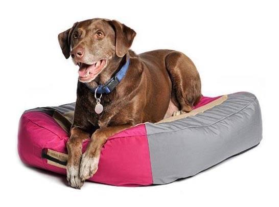 Обзор 7 лучших производителей лежанок для собак. рейтинг 2021 года по отзывам пользователей