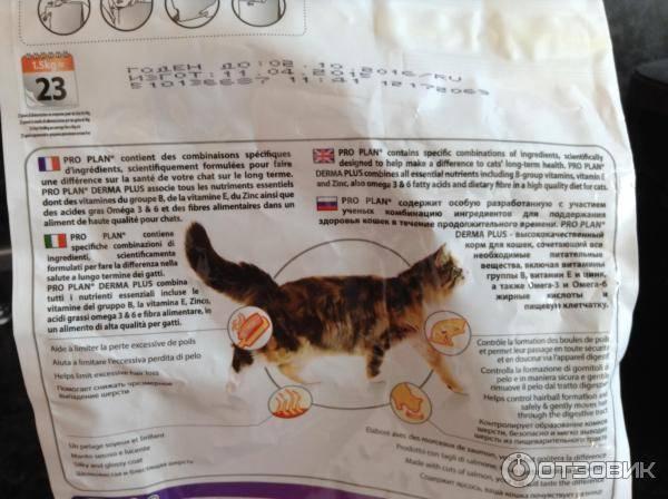 Органикс — корм для кошек