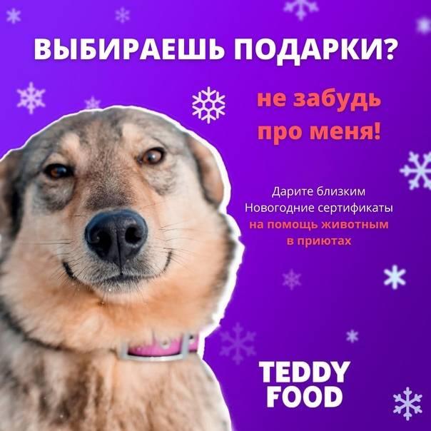Teddyid for business