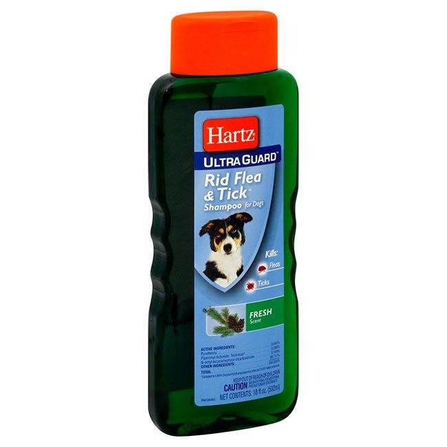 Обзор лучших шампуней для собак: виды, состав, достоинства и недостатки.