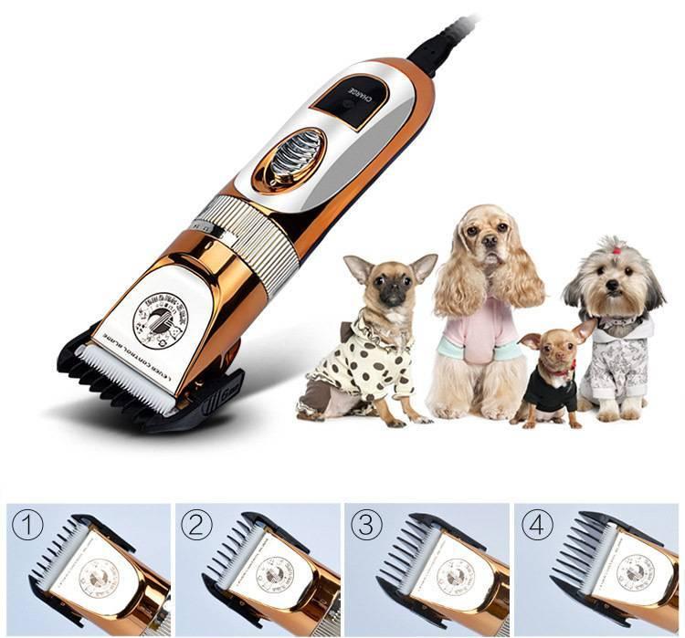 Рейтинг машинок для стрижки собак: профессиональных и любительских