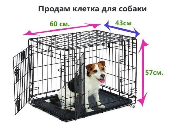 Описание мягких и металлических клеток для собаки для содержания в квартире