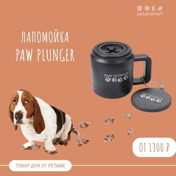Лапомойка для собак — как сделать своими руками