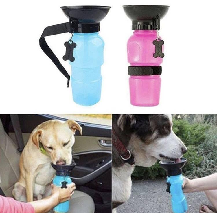Кормушка в вольер для собак  (17 фото): как выбрать выдвижную и безопасную кормушку для собак? особенности автопоилки. как закрепить миску?