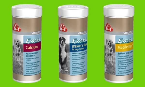 Все о витаминах для собак