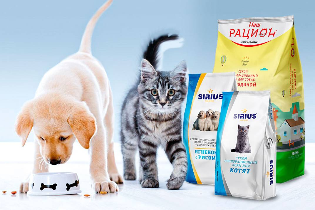 Диета при струвитном типе мочекаменной болезни у кошек
