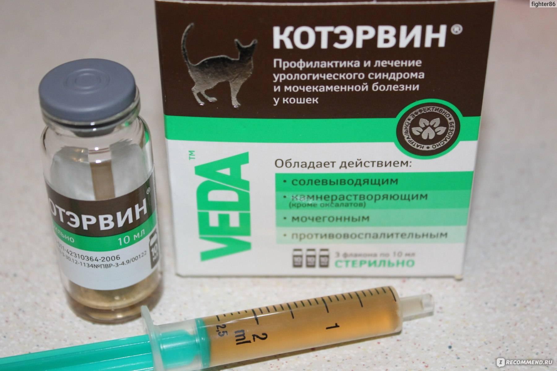 Клинический опыт применения препарата котэрвин прилечении уроциститаукотов