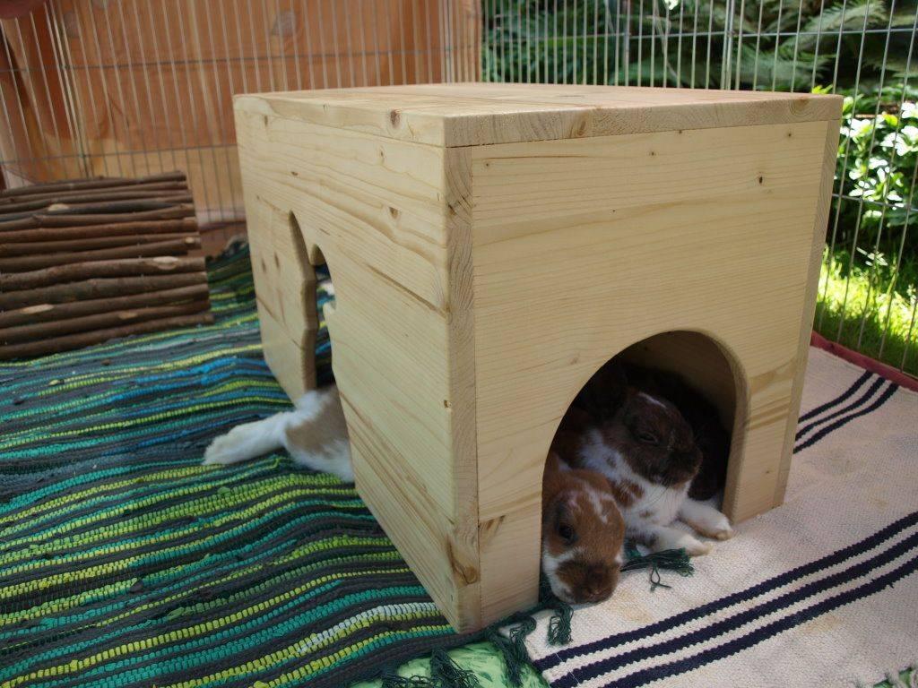 Как сделать домик для декоративного кролика своими руками