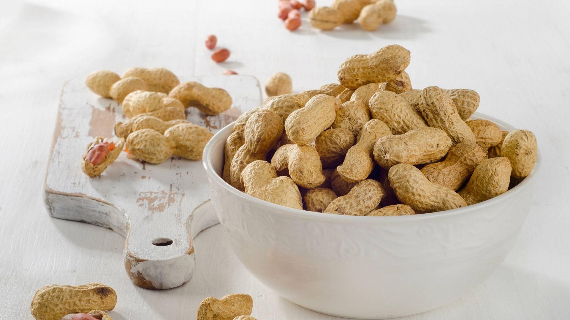 Можно ли давать орехи собакам? 13 фото какие орехи собакам есть не вредно, а какие категорически нельзя? вредны ли для собак грецкие орехи и фундук, макадамия и арахис, кешью и миндаль?