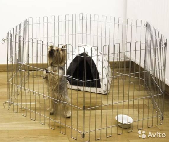 Какие вольеры для собак нужны: интересные фото, обустройство
