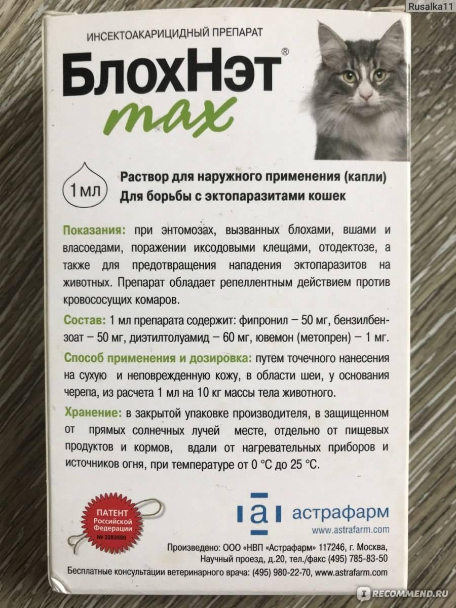 Капли блохнэт: инструкция, отзывы, обзор средства для кошек и собак