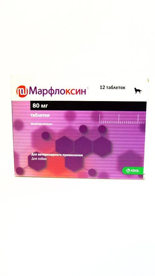 Марфлоксин 20 мг № 10 - купить, цена и аналоги, инструкция по применению, отзывы в интернет ветаптеке добропесик