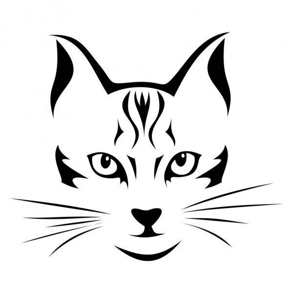 Как нарисовать мордочку кошки
