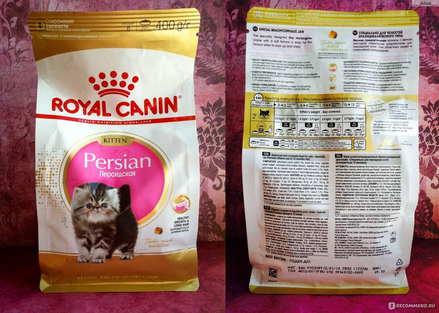 Корм для кошек royal canin - отзывы, обзор состава роял канин