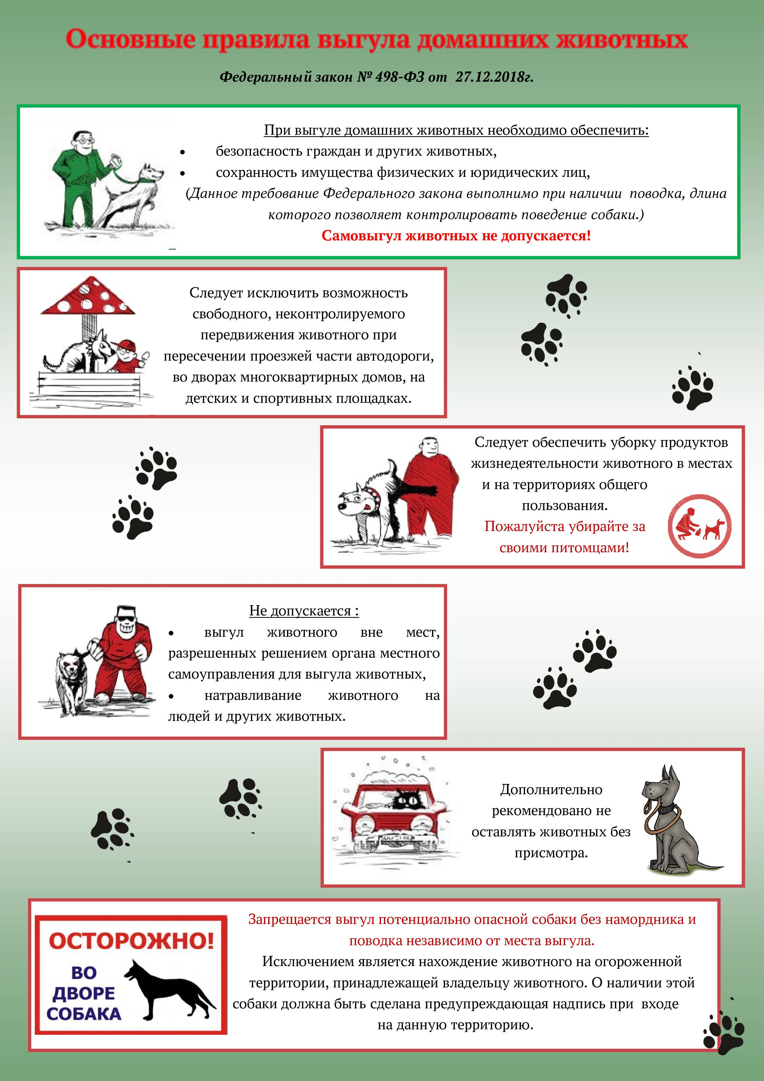 Какой штраф за выгул собаки без намордника и поводка в 2021 году