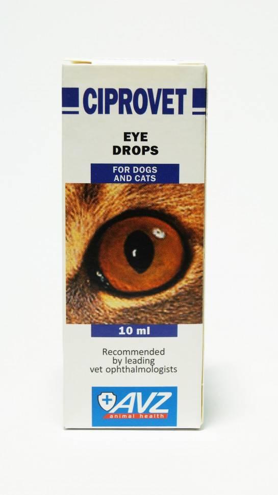 Ципровет (таблетки) для кошек и собак | отзывы о применении препаратов для животных от ветеринаров и заводчиков