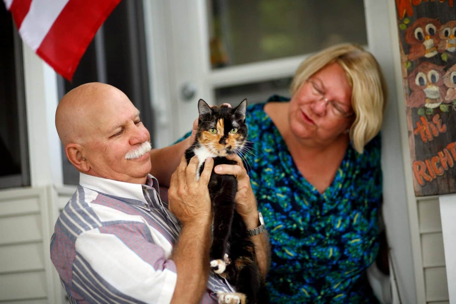 Любят ли кошки своих хозяев - признаки любви - kotiko.ru