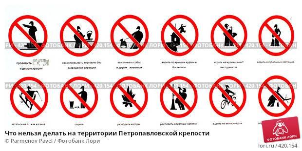 Не делайте так никогда. 7 вещей, которые на самом деле ненавидят кошки | cheltv.ru