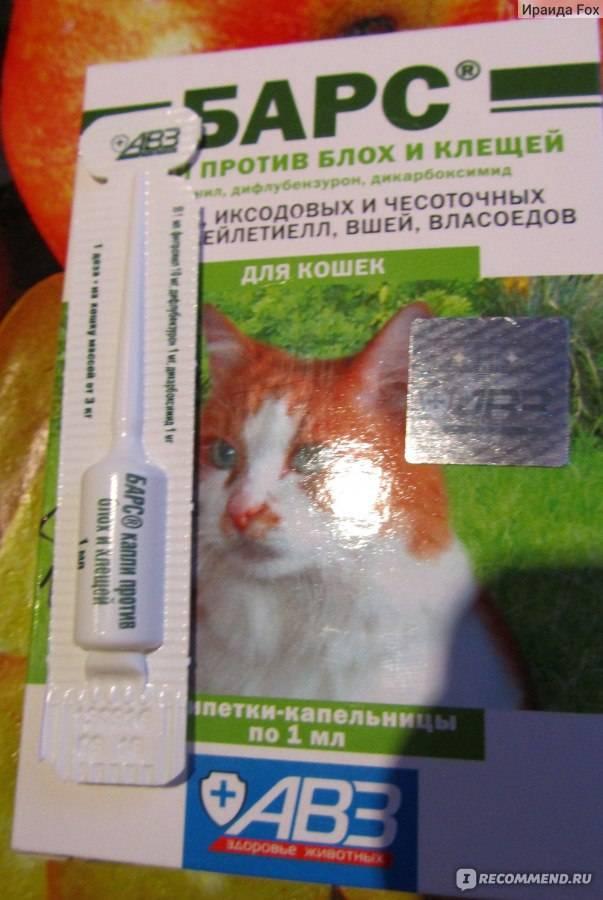 Средства от блох у кошек и котят