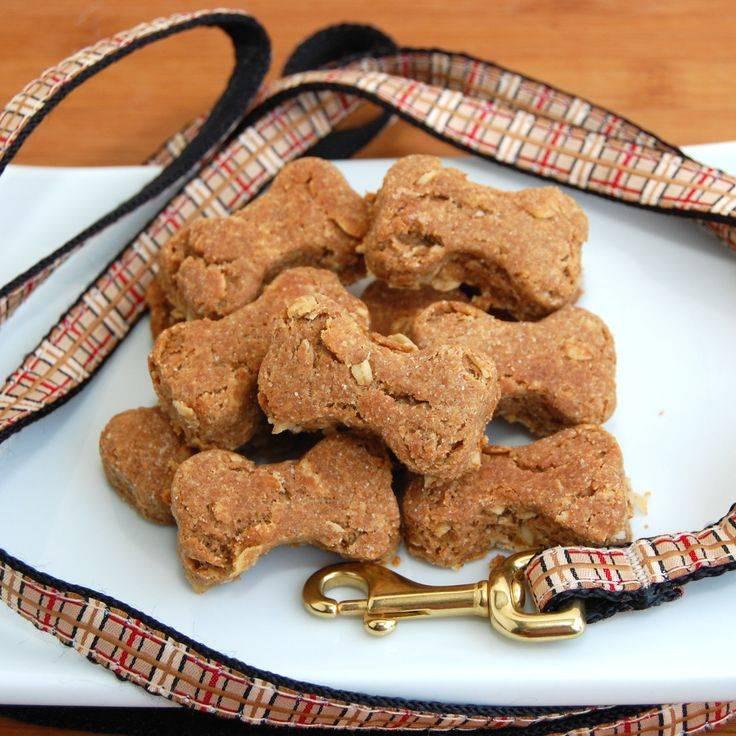 Вкусняшки для собак: 3 лучших рецепта лакомств, которые можно изготовить своими руками
