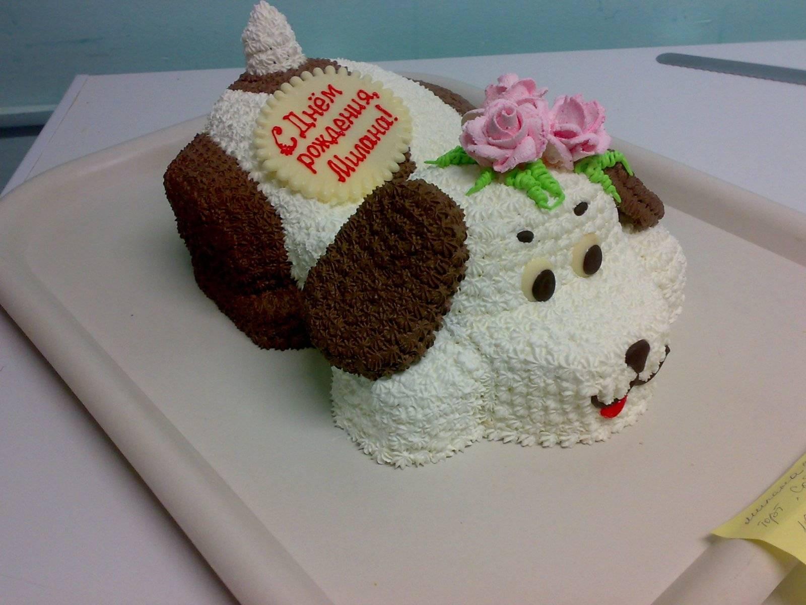 Торт на день рождения: оригинальный и необычный своими руками