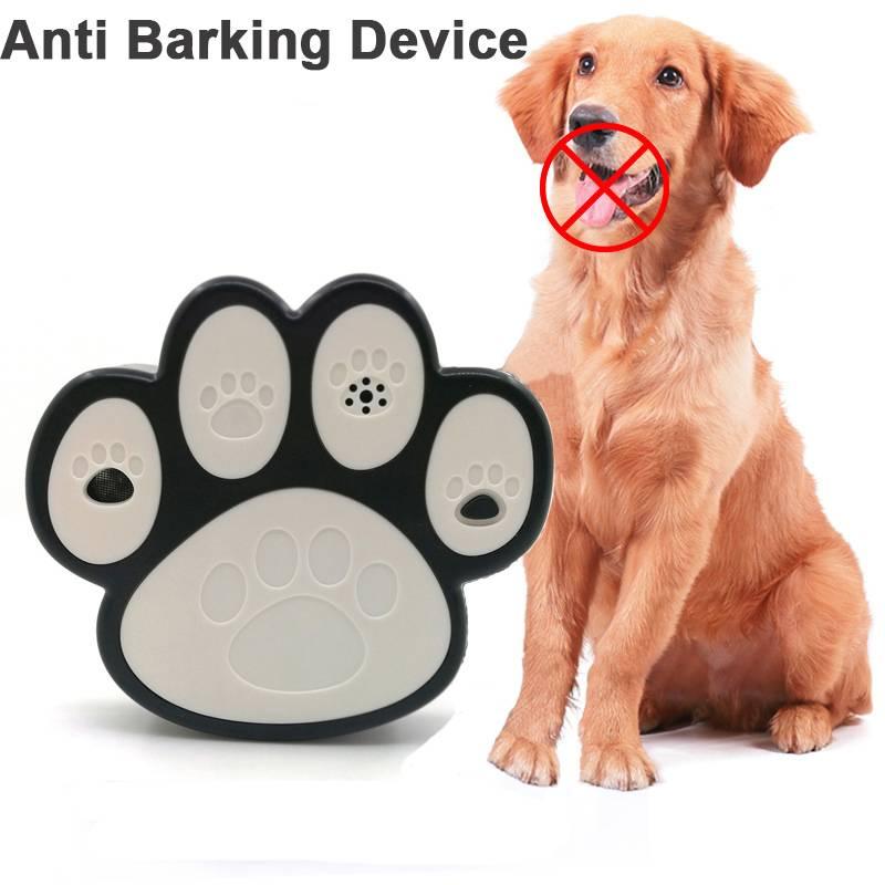 Заблуждения «переводчика с собачьего» - все о собаках на wikipet!