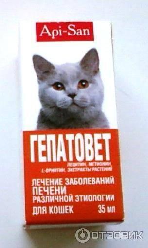 Гепатовет актив суспензия для кошек - купить, цена и аналоги, инструкция по применению, отзывы в интернет ветаптеке добропесик