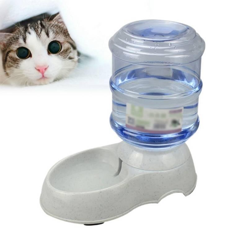 5 дешевых поилок для кошек из aliexpress